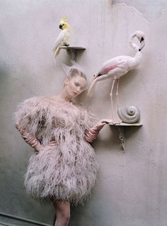 Jennifer Lawrence with some fancy bird - W magz