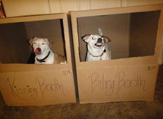 Kissing Booth Vs. Biting Booth lol