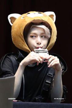 It fucking cutie Jooheon, Monsta X Hyungwon, Yoo Kihyun, Shownu, Gwangju, Youngjae, Kpop, Monsta X Funny, Jimin