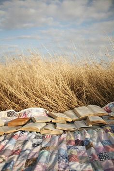 Photo by Samantha Lamb  When I was a girl, I'd take a quilt out on the grass and read and read and read and read.