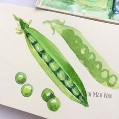 I love shelling fresh peas with my kids #theydrawandcook #foodillustration…