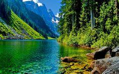 Горная, река, горы, скалы, лес, камни, деревья обои, картинки, фото