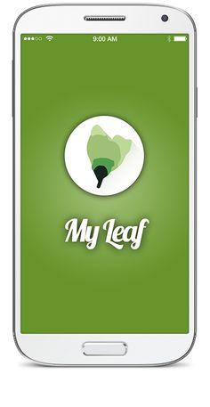 Domando Al Lobo: #234 #myleaf App para #EnfermedadesRaras