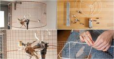 DIY Bird Cage Lamp 123