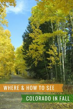 Tips on Where to Stay and What to Play in Colorado in the Fall.  The gold Aspens are legendary... you need ti visit at this gorgeous time of year!