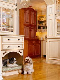Shih Tzu – Affectionate and Playful Built In Dog Bed, Dog Station, Yorkshire, Yorky, Dog Furniture, Dog Rooms, Dog Shower, Home Upgrades, Custom Cabinetry