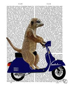 Meerkat on Dark Blue Moped, Art Print Wall Decor Wall Art Geekery Motorbike Vespa motorcycle illustration humor lambretta on Etsy, $12.00