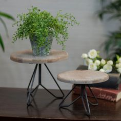 Top modern plant stand indoor for your cozy home