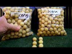 Carp Bait - Corn Bread Boilie #1 - YouTube
