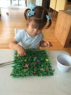 Procurando bichinhos no jardim e colocando no potinho com ajuda da pinça. Atividade montessoriana.