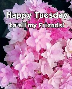 "Happy Tuesday ~~ Click on the pic to access my growing collection of Tuesday morning greetings on my Facebook Page. ~~ Please ""Friend"" me or ""Follow"" me while you're there. ~~ Have a wonderful day."