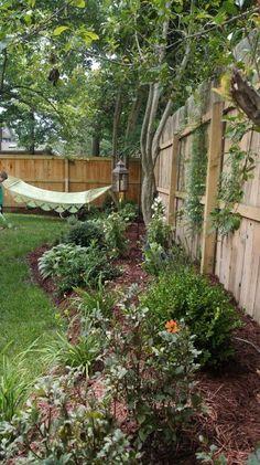 A hammock in the corner of the back yard