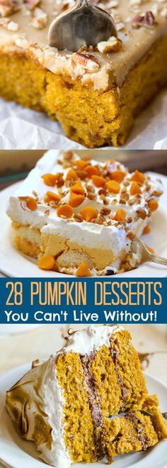 28 Pumpkin Desserts