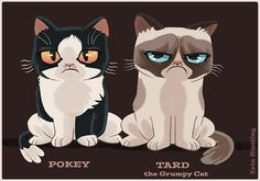 Pokey & Tard