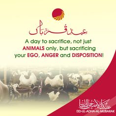 A day to sacrifice, not just animals only, but sacrificing your ego, anger and disposition! #TehzeebBakers