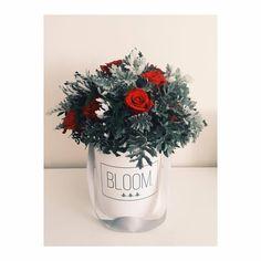 Wild flowerbox, Flowerbox, cvijece u kutiji