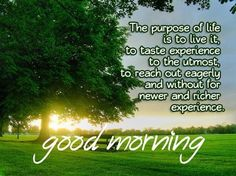 Good Morning Quotes with Beautiful Images - Tackk