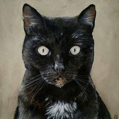 Ziggy. Small Animalportret in acrylic. Buskermolen.exto.nl