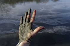 Report: River Contaminated With High Levels Of Lead, Arsenic, Mercury After NC Coal Ash Spill     By Rebecca Leber