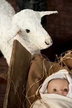 Life Sized Nativity scene
