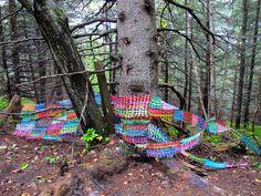 Types of Artwork — Vicky Lentz, Visual Artist Fence Weaving, Weaving Art, Natural Structures, Old Fences, Yarn Bombing, Bike Trails, Recycled Art, Land Art, Public Art