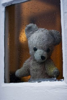Teddy Bear looks outside waiting for you to come home and have a hug and hot chocolate with him