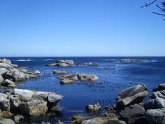 Cape Town Beaches 9 | CABS Car Hire | www.cabs.co.za