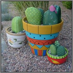 Cactus painted rocks in colorful containers brighten up the landscape.