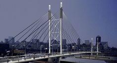 Nelson Mandela Bridge is a bridge in Johannesburg, South Africa. It was built in Nelson Mandela, San Francisco Skyline, South Africa, Bridge, Building, Travel, Viajes, Buildings, Bro