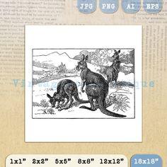 Kangaroo Digital Graphic Printable by VintageRetroAntique on Etsy