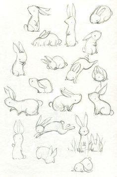 Kết quả hình ảnh cho rabbit