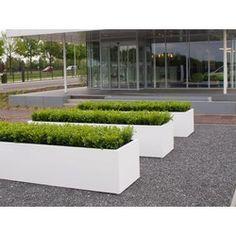 Trough Planters, Garden Planters, Garden Troughs, Fiberglass Planters, Buxus, Small Garden Design, Garden Boxes, Small Trees, Garden Accessories