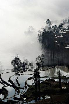 Terrace farming -  Photographer unknown