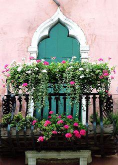Venice balcony with geraniums Venedig Balkon mit Geranie