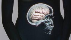unser Bauchgefühl als zweites Gehirn