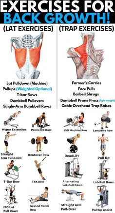 8 Best Muscle Building Back Exercises- Are You Ready To Grow? GymGuider 8 Best Muscle Building Back Exercises- Are You Ready To Grow? Weight Training Workouts, Gym Workout Tips, At Home Workouts, Lat Workout, Traps Workout, Biceps Workout, Latissimus Training, Latissimus Dorsi Exercises, Academia Fitness