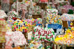 NYC, Style and a little Cannoli: Gingerbread Lane at the New York Hall of Science