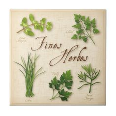 Fines Herbs, Recipe, Parsley, Chives, Tarragon, Tile