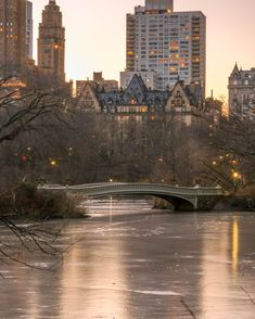 Central Park Bow Bridge Frozen Pond during winter with City lights in the background Frozen Pond, City Lights, Buy Frames, Central Park, New York Skyline, Brooklyn, Bridge, Gallery Wall, Bow