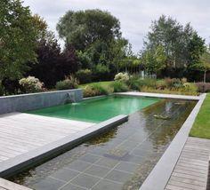 Une piscine écologique dans un décor contemporain Building Renovation, Natural Swimming Pools, Backyard Pool Designs, Modern Pools, Garden Inspiration, Future House, Exterior, Architecture, Marie Claire