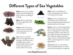Sea vegetables, also known as edible seaweeds, are not only incredibly tasty, they're also one of the most unique and nutritious foods on the planet! Most of us are familiar with the nori that wraps sushi rolls, but the list of edible seaweeds definitely doesn't end there. Learn more! #seaweed #seavegetables #nutrivore