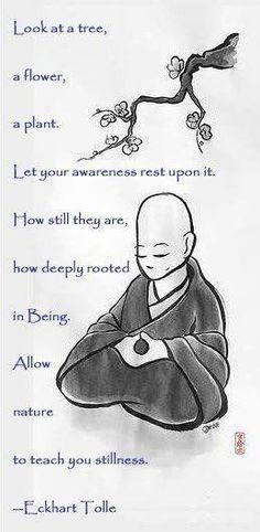 Spirituality, Meditation, Mindfulness