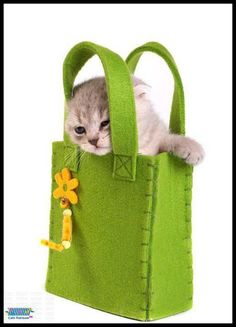 lovely felt bag