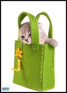 lovely felt bag
