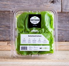 Butterhead Lettuce More