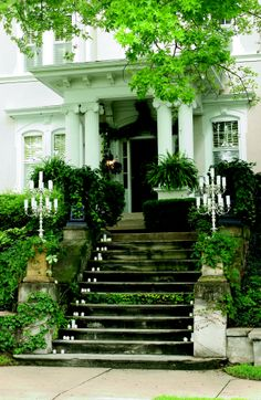 With a mossy front yard and shaded green garden, the home's front door step appears welcoming and stylish.