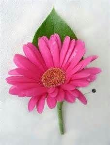 gerbera daisy boutonniere wedding - Bing Images