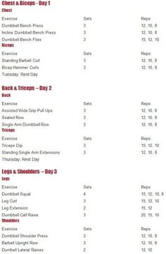 Workout Program  Workout Split Workout Program Workout
