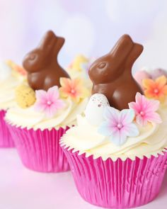 Vanilla Cupcakes, topped with a Lindt chocolate bunny & colourful sugar flowers 🐇🌸 | instagram.com/laurascakes_x Love Cupcakes, Easter Cupcakes, Vanilla Cupcakes, Lindt Chocolate Bunny, Chocolate Treats, Flowers Instagram, Easter Weekend, Easter Party, Bank Holiday