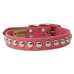 Ancol Heritage Nylon Puppy Dog Collar Durable Strong Great Value Buckle Fasten